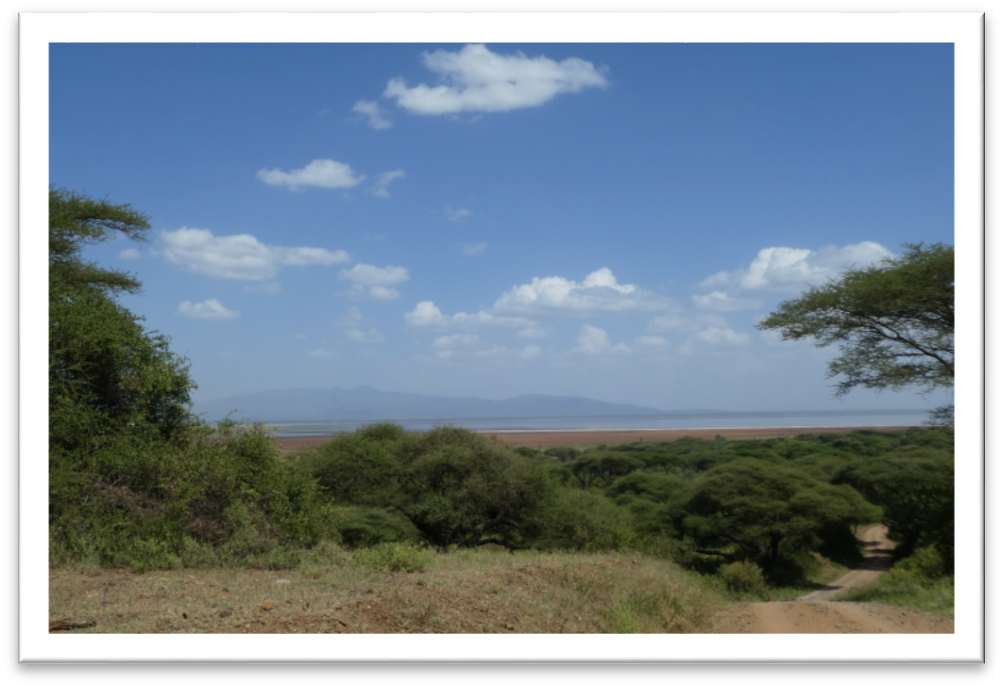 Manyara NP -  View to Lake