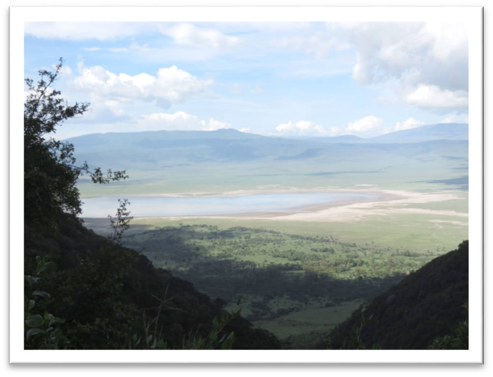 Ngorongoro CA - View into Crater